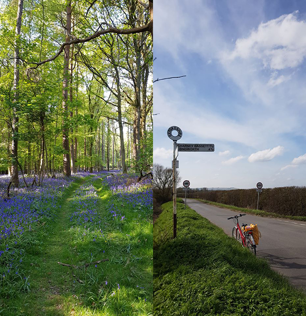 (L-R) bluebells; Sarah Stacey's bicycle