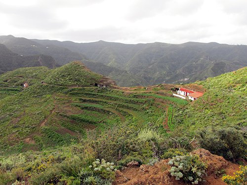 A view over the scrublands at Chinamada, in the Anaga Mountains - © Henry Grub