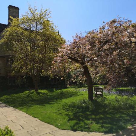 The Merton Chapel garden and Grove